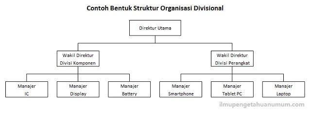 Contoh bentuk Struktur Organisasi Divisional