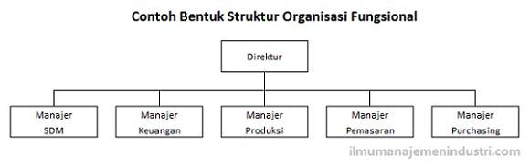 Contoh bentuk Struktur Organisasi Fungsional