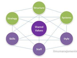 Pengertian McKinsey 7s Framework dan Penerapan dalam Industri