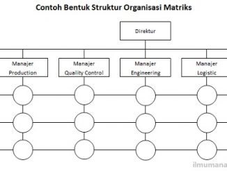 pengertian dan bentuk bentuk struktur organisasi ilmu manajemen Struktur Organisasi Fungsional pengertian dan bentuk bentuk struktur organisasi