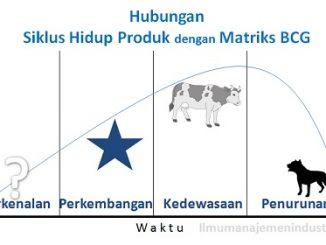 Pengertian Analisis Matriks BCG dan Contohnya
