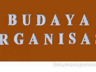 Pengertian Budaya Organisasi (Organization Culture)
